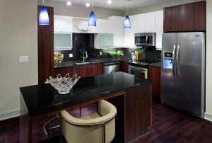 Design District High Rise Kitchen