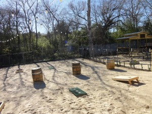 Adult Playground